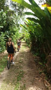 1.3 Fietstocht - Suriname rondreis Around The World Travel