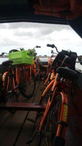 1.3 Fietstocht naar Marienbosch - Suriname rondreis Around The World Travel