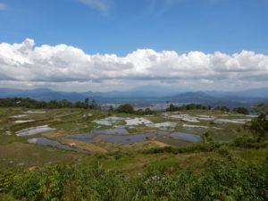 Day 13. Toraja Around The World Travel