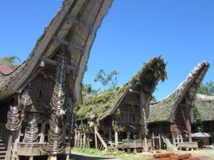 Day 14. Toraja Around The World Travel