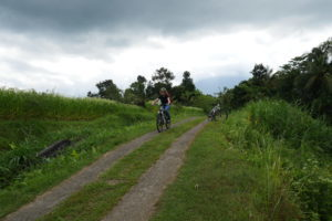 Day 9 Ebike Tegallang Around The World Travel