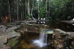 Ecopark Around The World Travel