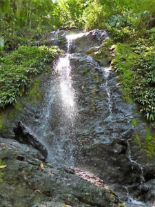 Verlenging 1 1.15 wandeling waterval Brownsberg - Suriname rondreis Around The World Travel