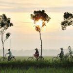 Vietnam rondreis - Around The World Travel