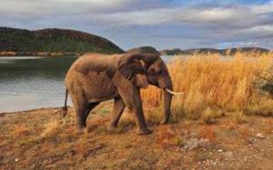 Rondreis Zuidelijk Afrika - Around The World Travel