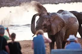 Rondreis op maat Namibie - Around The World Travel