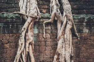 Koh Ker and Beng Mealea Around The World Travel.jpg