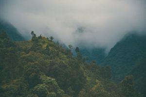 Chitwan Nepal rondreis Around The World Travel