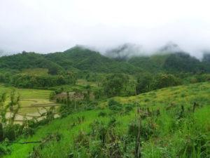 Dag 2 Transfer Luang Namtha Laos - Around The World Travel