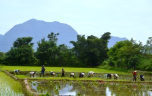 Vang Vieng - Laos - Around The World Travel