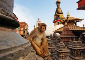 rondreis Kathmandu Nepal Around The World Travel