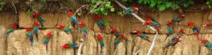 Day 11 - rondreis Peru Around The World Travel