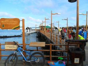 Day 14 - Puerto Ayora Town - bijzondere Rondreis Ecuador - around the world travel