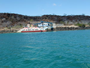 Day 17 - Baltra - bijzondere Rondreis Ecuador - around the world travel