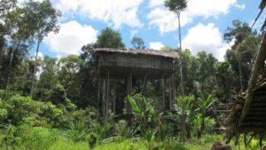 Bijzondere rondreis Indonesië | Around The World Travel - Korowai 16