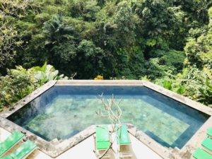 dag 16 - Familie Rondreis Indonesie - Around The World Travel ubud