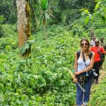 Bwindi - Gorilla Tracking   rondreis Oeganda met Around The World Travel